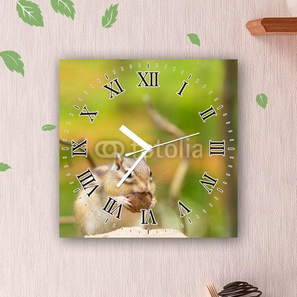 【掛け時計】胡桃を食べるシマリス