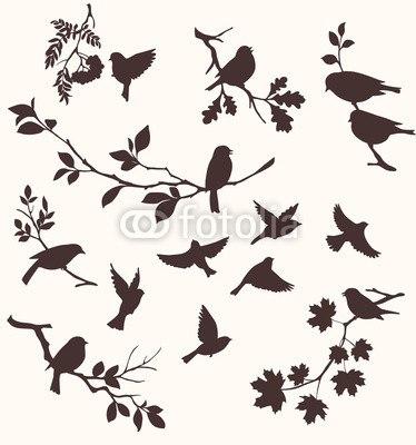【インテリアシール】小鳥のシルエット 壁シール