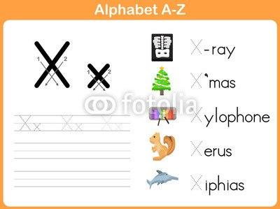 Xから始まる単語とアルファベット ウォールステッカー