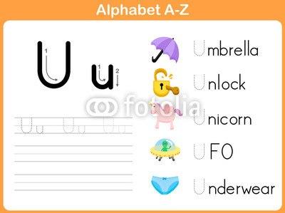 D から 始まる 英 単語