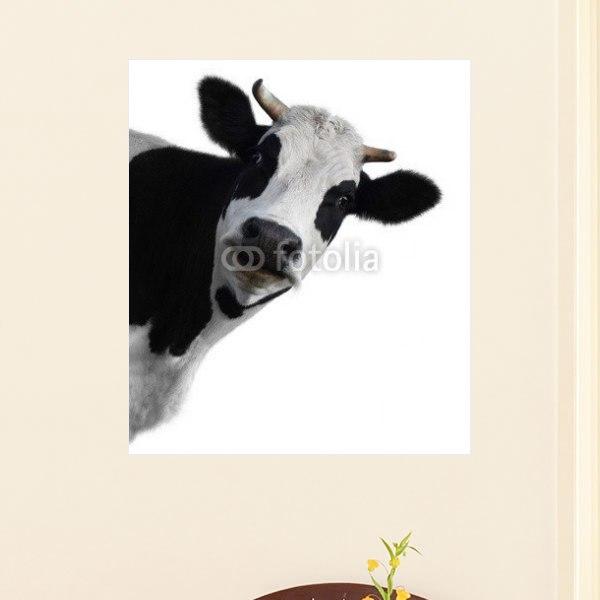 【インテリアポスター】こちらをのぞく牛さんポスター