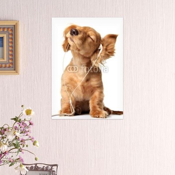 【インテリアポスター】音楽を聴く犬ポスター