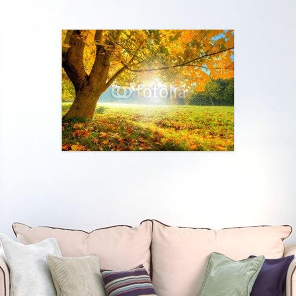 【インテリアポスター】美しい秋の木洩れ日