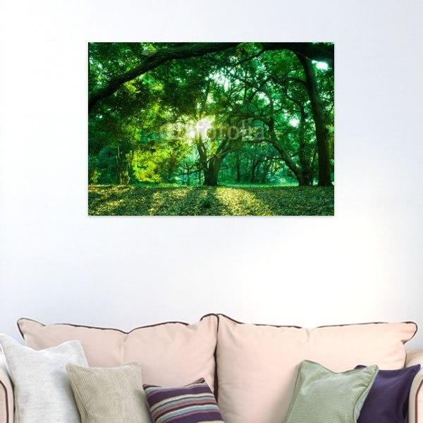 【インテリアポスター】森林の木漏れ日