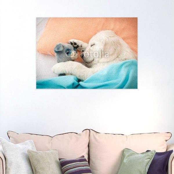【インテリアポスター】ラブラドールの子犬ポスター