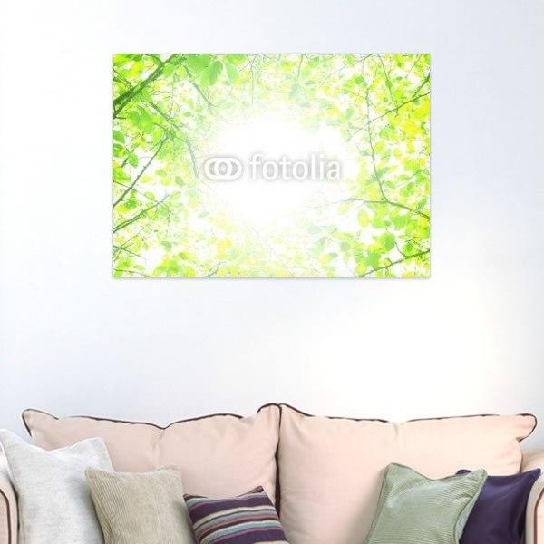 【インテリアポスター】輝く新緑の季節
