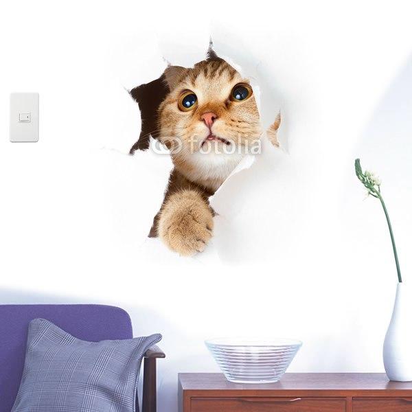 【インテリアシール】遊びに夢中なキジトラねこちゃん 壁シール
